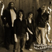 Tequila Mockingbird LLC - Rock Band in Englewood, Colorado