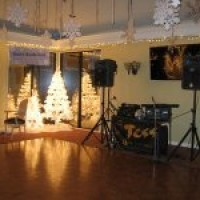Tess Productions - Wedding DJ in Melbourne, Florida