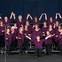 Texas Harmony Chorus - A Cappella Singing Group in Arlington, Texas