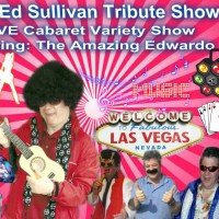The Amazing Edwardo - Neil Diamond Impersonator in Toronto, Ontario