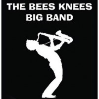 The Bees Knees Big Band - Big Band in Minneapolis, Minnesota
