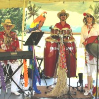 The Calypso Gypsies Steel Drum Band - Reptile Show in Huntington, West Virginia