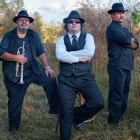 The Cowboy Blues Band - Cover Band in Collins, Mississippi