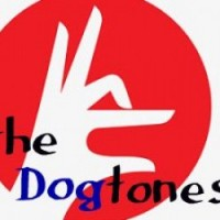 The Dogtones - Wedding Band in Bellevue, Washington