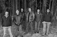 The Grey Street Band - The DMB Experience - Tribute Bands in Williamsport, Pennsylvania