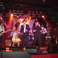 The Jesters - Funk Band / Ska Band in Chicago, Illinois