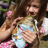The Lizard Wizard - Reptile Show in Garden Grove, California