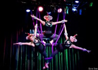 The Mystic Ponies - Acrobat in Metairie, Louisiana
