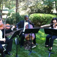 The New York String Ensemble - String Quartet in Perth Amboy, New Jersey