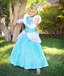 Cinderella Orange County Princess Party Character