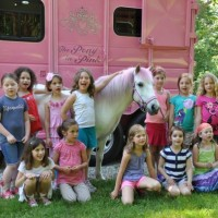 The Pony In Pink - Pony Party in New City, New York