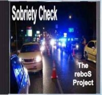 The reboS Project - Top 40 Band in Athens, Alabama