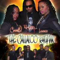 The ReQuest Band - Calypso Band in Lumberton, North Carolina