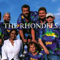 The Rhondels - Cover Band / Party Band in Virginia Beach, Virginia