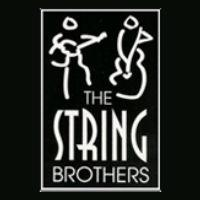 The String Brothers - Classical Ensemble in Elmira, New York