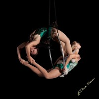 The Wing Project - Aerialist in Knoxville, Tennessee