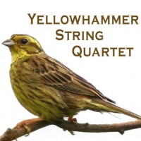 The Yellowhammer String Quartet - Classical Music in Prattville, Alabama