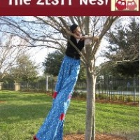 The ZESTY Nest - Costume Rentals in ,