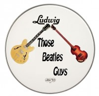 Those Beatles Guys