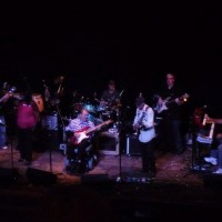 Toler Tucci Band - Bands & Groups in Sarasota, Florida