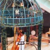 Tomoko, Harpist - Celtic Music in Manhattan, New York