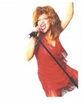 THE TINA TURNER TRIBUTE FROM LAS VEGAS