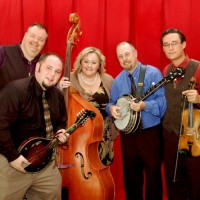 Travers Chandler and Avery County - Bluegrass Band in Charlotte, North Carolina
