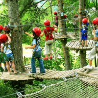 Treetop Obstacle Course - Event Services in Gainesville, Georgia