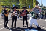 At the Oakland A's Fiesta Day
