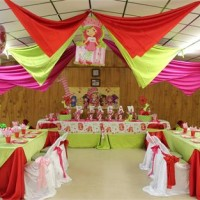 Unique Event Planning - Princess Party in Adrian, Michigan