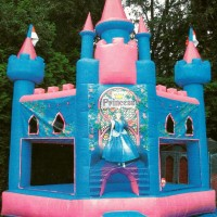 Village Idiotz - Party Inflatables / Party Rentals in Manchester, New Hampshire
