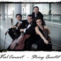 Viol Consort String Quartet - Classical Music in Brownsville, Texas