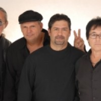 Viva Classic Rock & Roll - Rock Band / Classic Rock Band in Hollywood, Florida