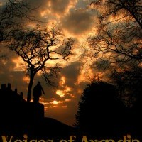 Voices Of Arcadia - Rock Band in Chambersburg, Pennsylvania