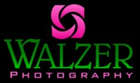 Walzer Photography: Seattle Wedding Photographer
