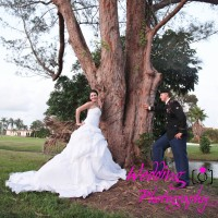 Wedding Photography LLC - Portrait Photographer in Hallandale, Florida