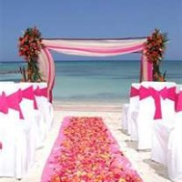 Weddings by Dianna - Event Planner in Sarasota, Florida