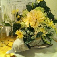 Weddings - Event Planner in Bourbonnais, Illinois