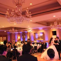 Weddings with Willow - Wedding Planner in Arlington, Virginia