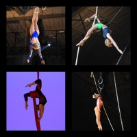 Wendy Bell Aerialist - Circus & Acrobatic in Winter Haven, Florida