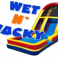 Wet N' Wacky (Inflatable Water Fun) - Bounce Rides Rentals in Lincoln, Illinois
