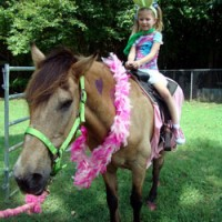 Whispering Hope Farm - Pony Party in Bristol, Virginia