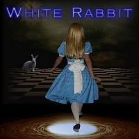 White Rabbit - Classic Rock Band in Binghamton, New York
