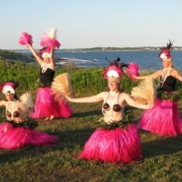 Wingmaker Entertainment - Hula Dancer / Harpist in Pawtucket, Rhode Island