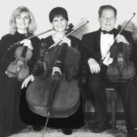 Wrightwood Ensemble - Classical Ensemble / Violinist in Studio City, California