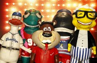 ZOOperstars! - Costumed Character in Vincennes, Indiana