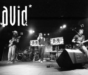 Avid__live_sw