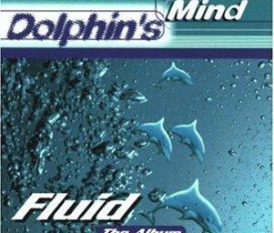 Dolphins_mind_51a66d126zl__sl500_aa300_