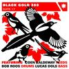 Black_gold_360_suite_17_album