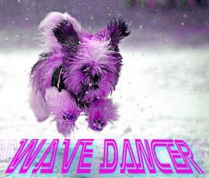 Wave_dancer_wave